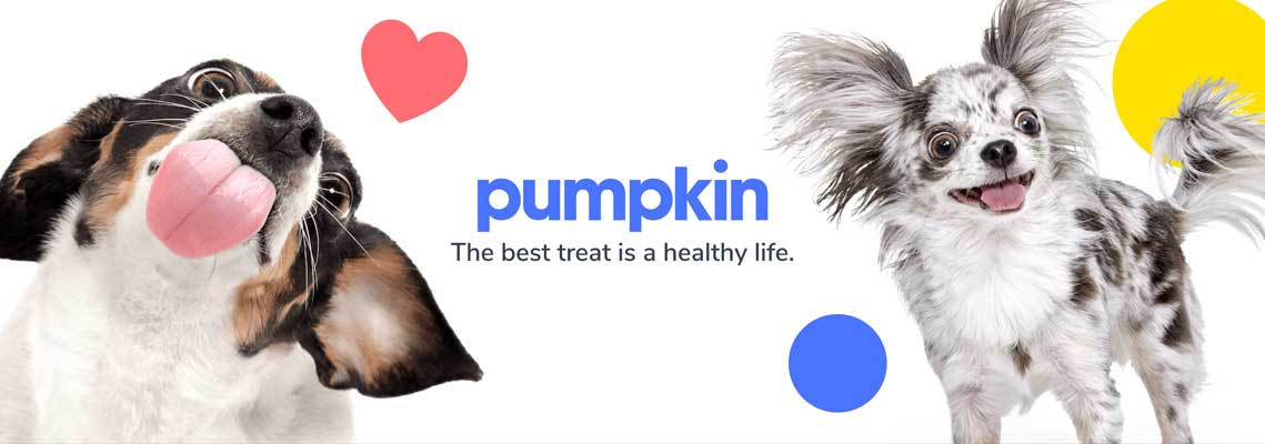 Puppy Haven is proud to officially endorse Pumpkin pet insurance.